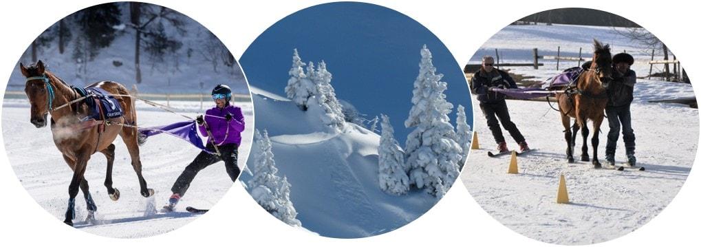 Ski Joering Grenoble